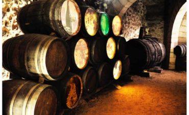 Centro de Interpretación de Arquitectura del vino de Aranda de Duero