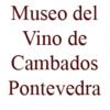 Museo del Vino de Cambados