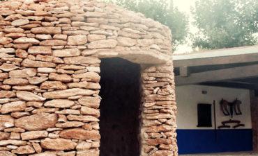 Museo del Vino Torre de Socuellamos