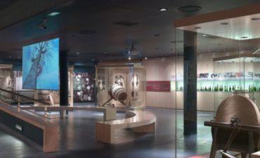 Museo de la Cultura del Vino Vivanco