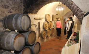 Museo del Vino de Aranda de Duero. Ribiértete